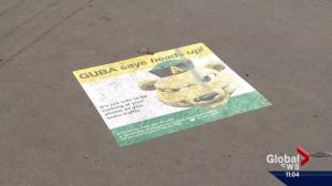 University of Alberta uses ground-up approach to tackle dangers of texting and walking