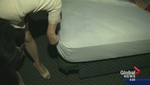 Can you avoid bed bugs at your next hotel stay?