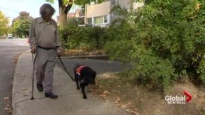 NDG man denied funding for service dog