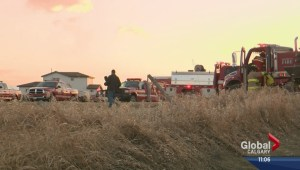 Fire ban issued after grassfires