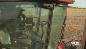 Difficult harvest for Alberta farmers