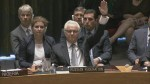 RAW: Russia vetoes UN Security Council resolution on tribunal for MH17 crash