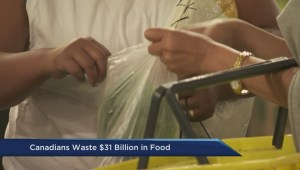 Canadian food waste report