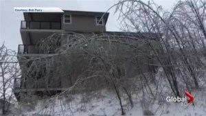 Thick ice covers Chilliwack house and trees