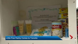 Toronto woman starts 'Little Free Pantry' for people to donate food
