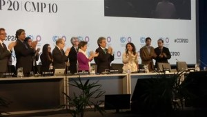 WWF delegate reacts negatively to U.N. climate change agreement