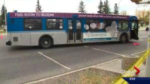 Pedestrian killed after being hit by bus near West Edmonton Mall