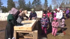 New Brunswickers enjoy sunshine and syrup at annual Sugar Bush