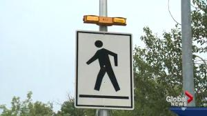 Edmonton crosswalks being reviewed