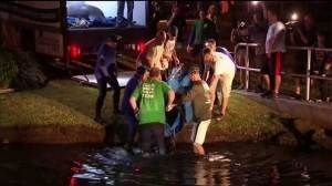 Reaction as 19 stuck manatees returned to lagoon