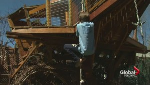 City committee rejects family's appeal to keep large tree house in backyard
