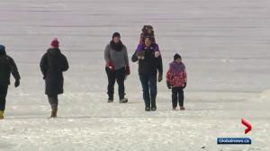 Alberta families challenged to unplug for Family Day