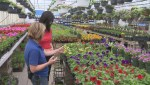 Get Gardening with Global News Morning – Garden Inspiration