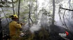 Wildfire burning near Kejimkujik Park an uphill battle for firefighters