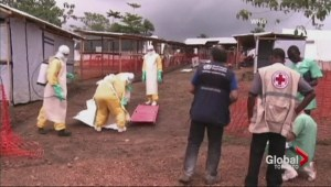 Scientists monitoring Elbola outbreak in west Africa