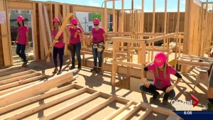 Global Saskatoon team brings out the muscle to help in Habitat for Humanity build