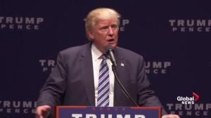 'She has less energy than Jeb Bush': Trump on Hillary