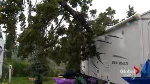 Central Alberta campground evacuated during powerful summer storm