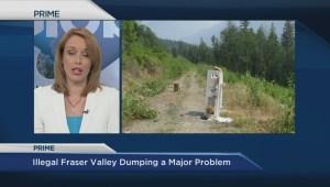 Illegal dumping along Fraser River