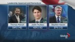 Mulcair surges, Trudeau sags in early election polls