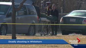 Man shot to death in Whitehorn