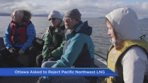 Ottawa asked to reject B.C.'s Pacific Northwest LNG project