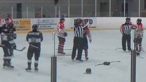 Video shows linesman punch junior hockey player before getting tackled by trainer