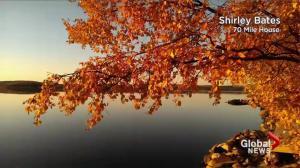 BC Evening Weather Forecast: Oct 4
