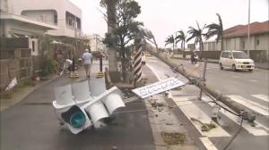 Aftermath of Typhoon Goni on island of Okinawa