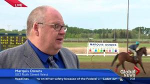 Marquis Downs opens 2016 racing season