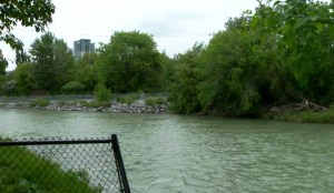 Rainfall raising water levels along Elbow River