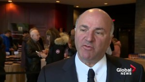 'If she had worked for me… I would have fired her': Kevin O'Leary on Rachel Notley