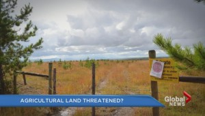 Fight over agricultural land flares up again