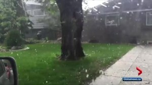 Hail damage claims piling up in Saskatoon