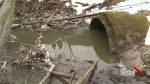 Riverview residents contend with sewage leak