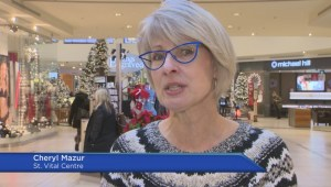 Mall shopping on decline, experts say