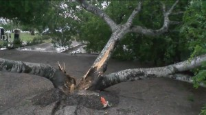 RAW: Storms leave flooding and damage in Texas