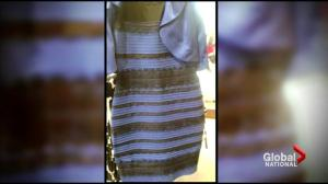 Hot debate over the colours of 'the dress' spreads online