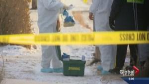 Innisfail pipe bomb witness testimony