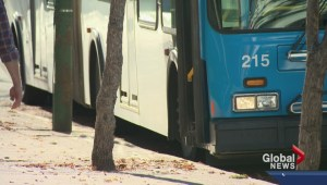 Buses roll out on Saskatoon streets as lockout ends