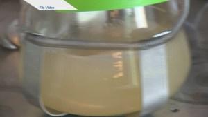 University of Regina researchers tally microplastics in Wascana
