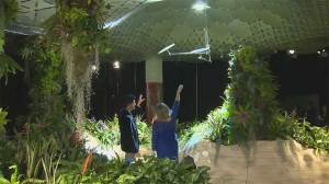 'Lowline' group wants to introduce solar technology to enable underground life