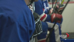 New program helps aid young hockey players