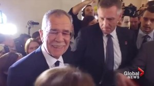 Van der Bellen says Austrian election victory sends pro-European message