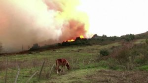 Firefighters battling ongoing wildfires in Spain