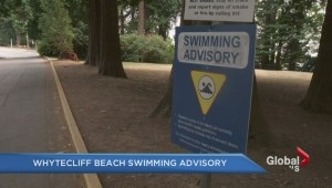 High levels of E Coli detected at Whytecliff beach