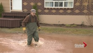 Water logged Sussex homes infested with mold