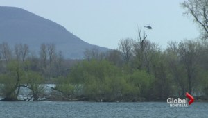 Search for teen feared drowned in Chambly