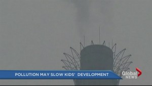 Pollution may slow kids' development