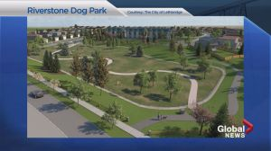 West Lethbridge community of RiverStone builds fenced-in dog park